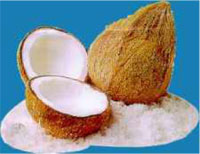 mesin-pemarut-kelapa-maksindo-902 tokomesinmakassar