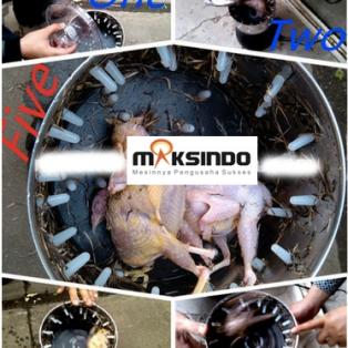 Jual Mesin Pencabut Bulu Burung Puyuh – Merpati di Makassar